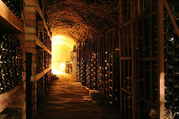 201101_Wine_cellar_resized.jpg
