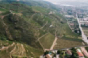 201404_Steep slopes of Cote Rotie.jpg