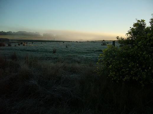 201205_Frozen morning2 - May 2012.jpg