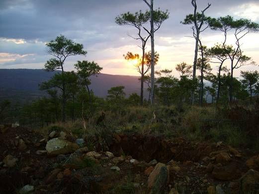 201201_sunset.jpg