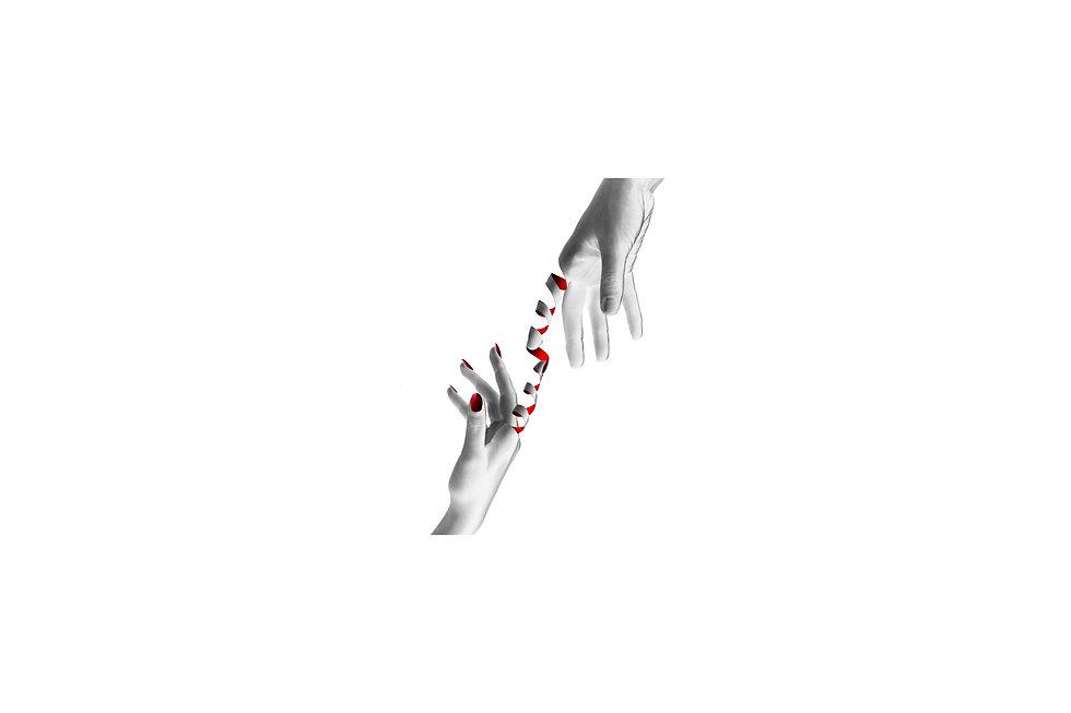 redstrand_white-2.jpg