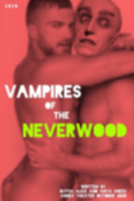 Vampires of the Neverwood.jpg