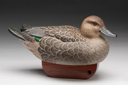 PCC2017- 3rd Best of Show Open - Susan Cowtan green-winged teal hen