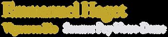Logo2b.png