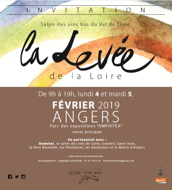 Affiche_La_Levée_en_Loire_Fevrier_2019.P