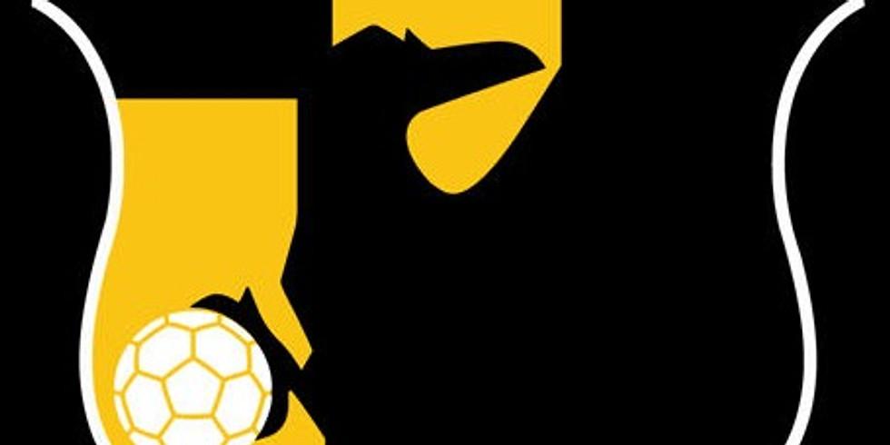 Fotbollsskoj med Stahre Akademin