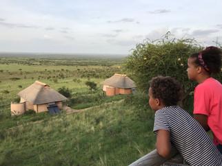 Gazing over the plains - Serengeti