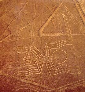Il Ragno di Nazca