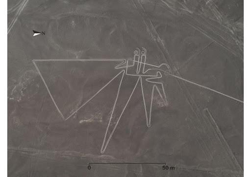 Uno dei 143 nuovi geoglifi scoperti a Nazca