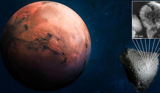 Vita su Marte: forme di vita sul meteorite marziano Black Beauty