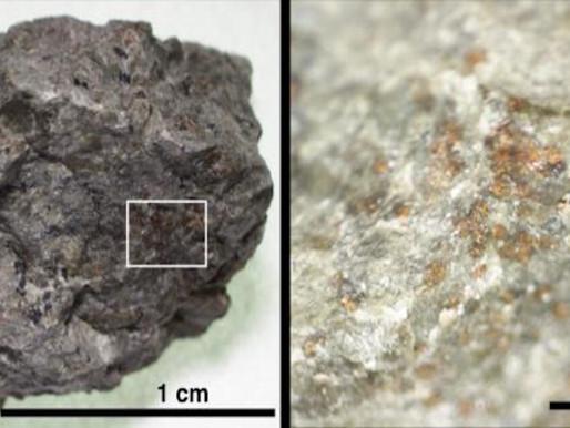 ALH84001 nel meteorite marziano la firma dell'antica abitabilità e della vita sul pianeta rosso.