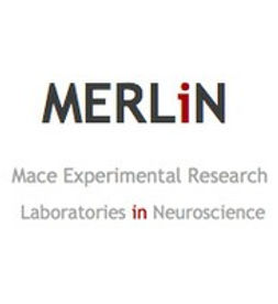 MERLiN logo.jpeg