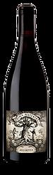 Aglianico bottle