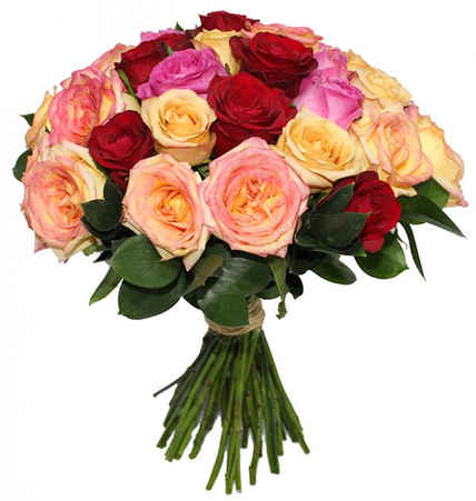 36 rosas coloridas e rusgo