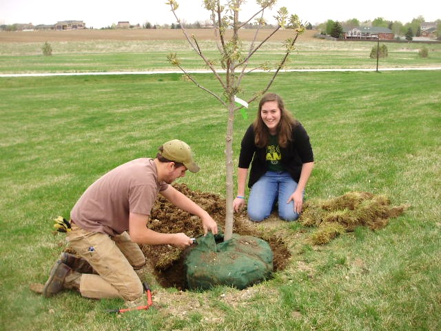 Trees - arbor day plantings (3)_edited.j