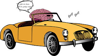 Brain Driving.jpg