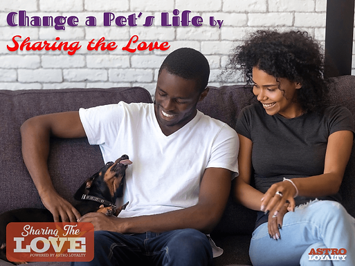 Change a Pet's Life by Sharing the Love!