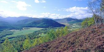Upper-Deeside-Scotland.jpg
