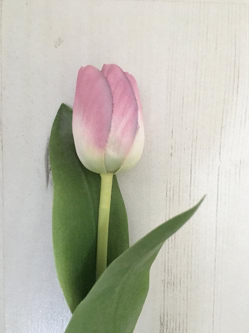 tulip stem silk mauve