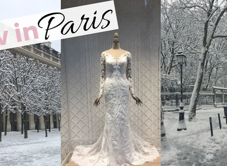 Liv in Paris 14: Snow Storm in Paris