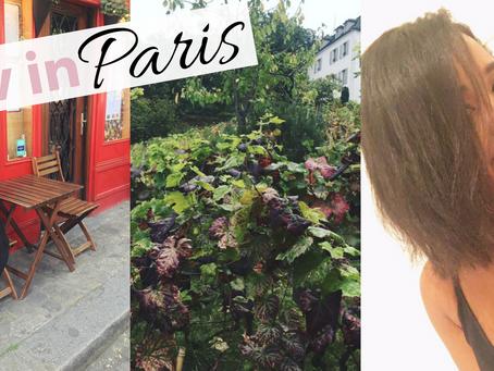 Liv in Paris 5: Montmartre Festival and Having a Meltdown