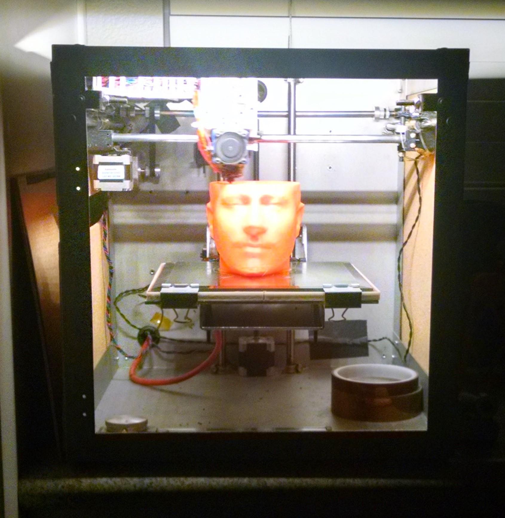 3d Printed Bust