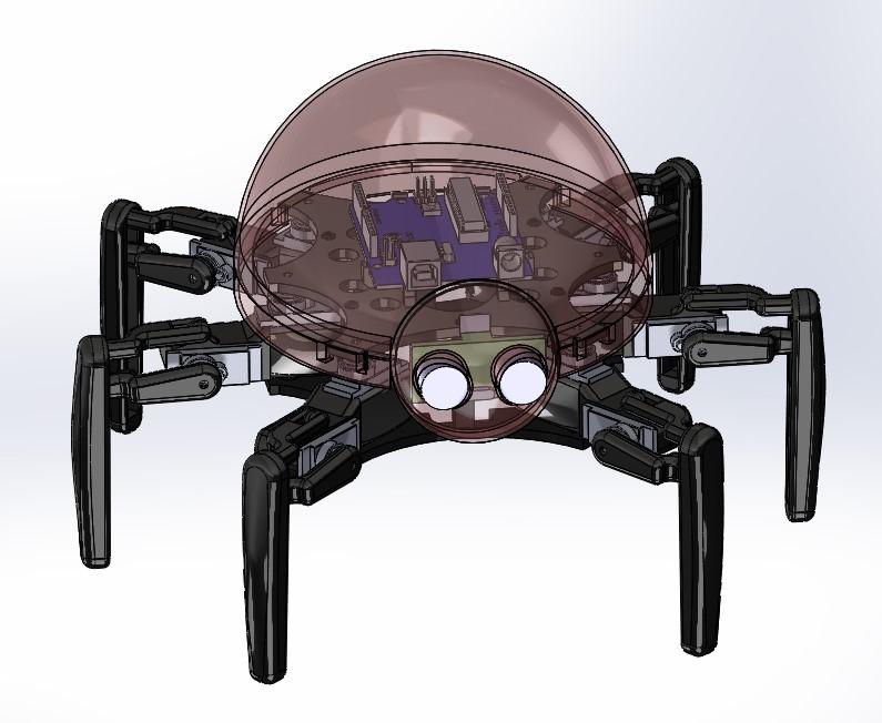 Custom Hexapod Robot Design