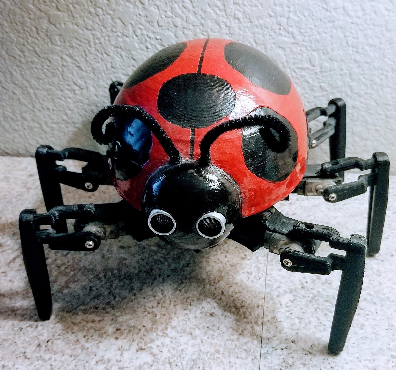 Hexapod Robot Build