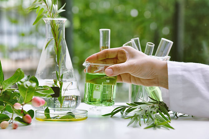 Scientist with natural drug research, Natural organic and scientific extraction in glasswa
