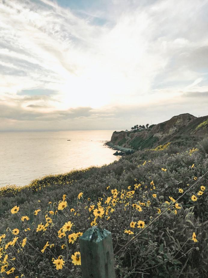 Sunset along Pt. Vicente