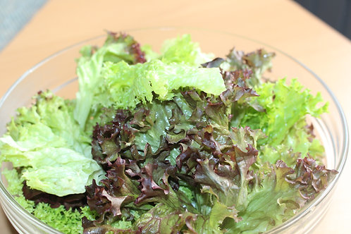Gartensalate