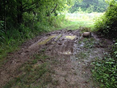bad trail.jpg