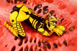 Human wasp guards watermeloon