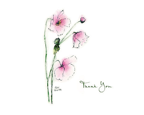 Pink Anemone - Thank you
