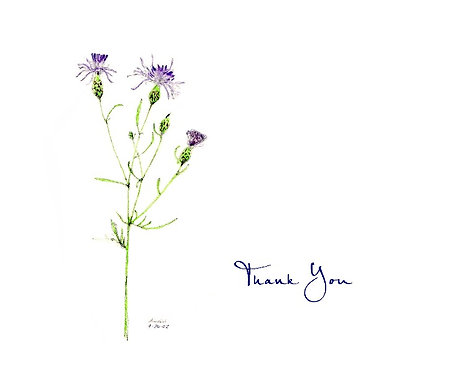 Thistle - Thank You