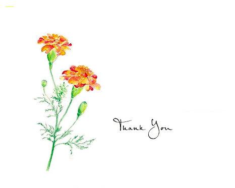 Marigold - Thank You