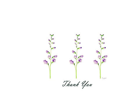 False Indigo - Thank You