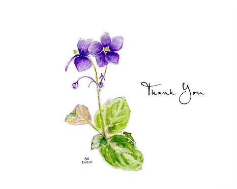 African Violet - Thank You