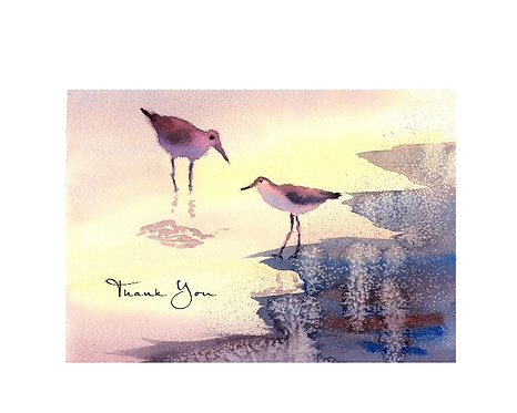 Tern - Thank You
