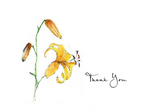 Lily - Thank You