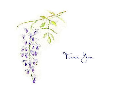 Wisteria - Thank You