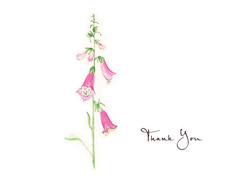 Foxglove - Thank You
