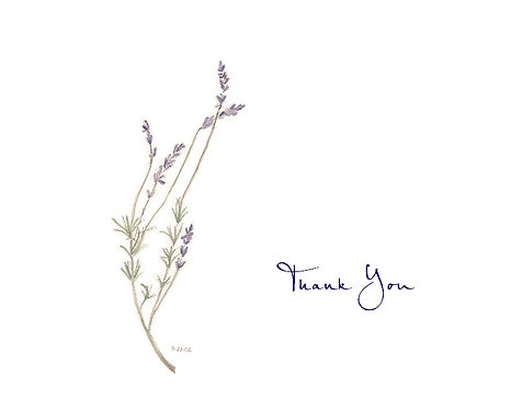 Lavender - Thank You