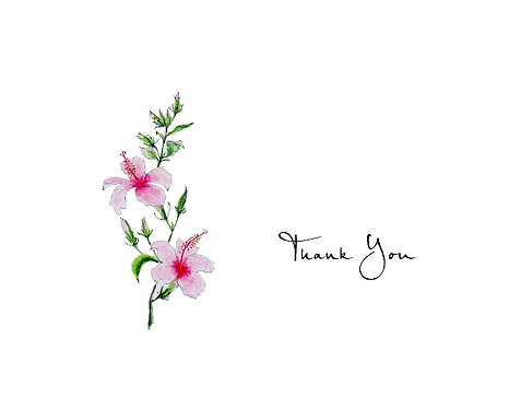 Hibiscus - Thank You