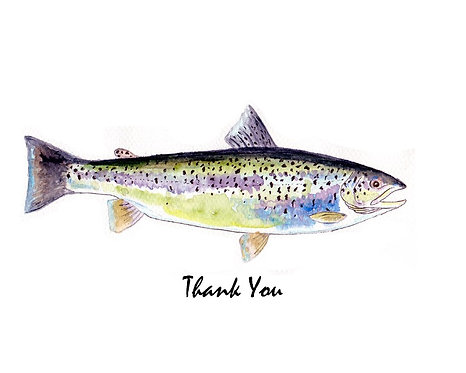 Trout - Blue - Thank You