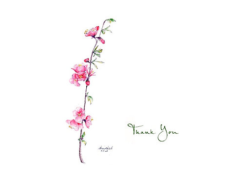 Quince - Thank You