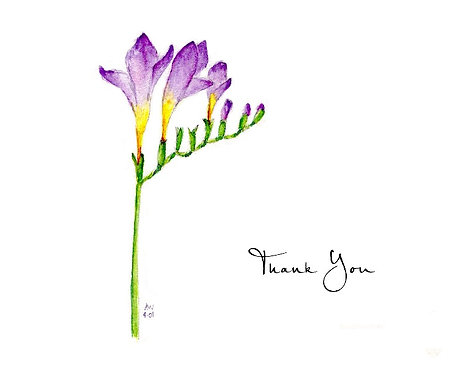 Freesia - Thank You