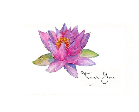 Waterlily - Thank You