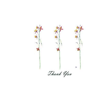 Epimedium - Thank You