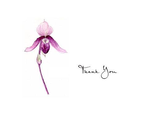 Lady Slipper - Thank You